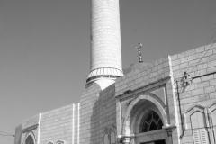 Palestine1989Proj-012